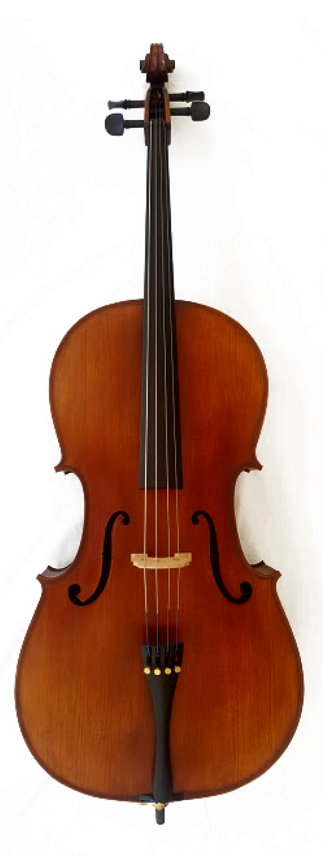 ENDEAVOUR 'Artisan' Cello