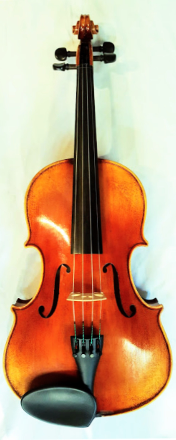 ...(ARCHIVED)... Tertis Viola 15 inch 2014
